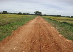 agricultural-road-maintenance-redibendi-ela