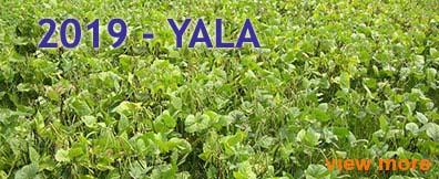 2016-yala