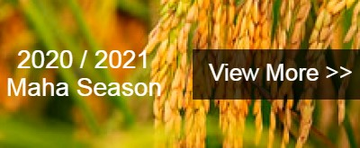 2020-2021-maha